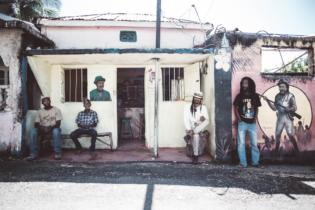Jamaica Roots