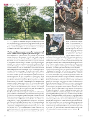 pdf-emag (27)3